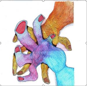 Dibujo del Maestro Miguel Ángel Gélvez Ramírez - Corporal 2/20 - Arti - Tienda de arte y diseño